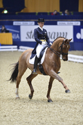 Finale Meggle Champions in Dortmund